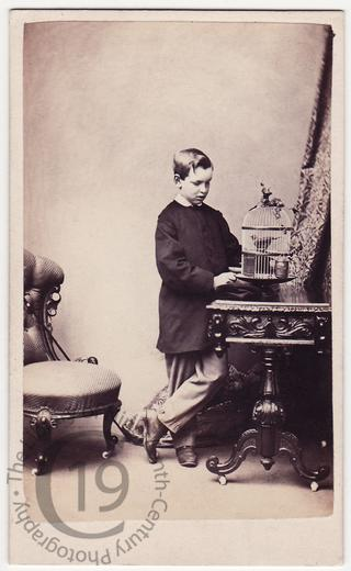 Boy with birdcage