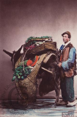 Neapolitan man with donkey