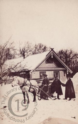A horse-drawn sleigh in the snow