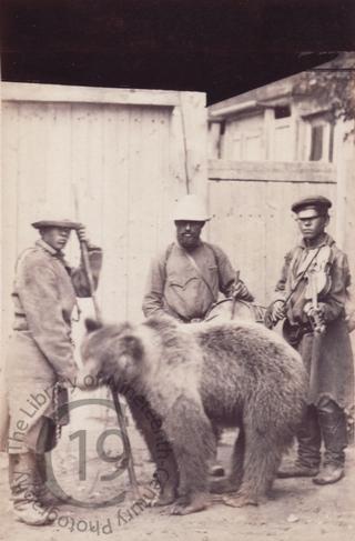 Street musicians with a bear