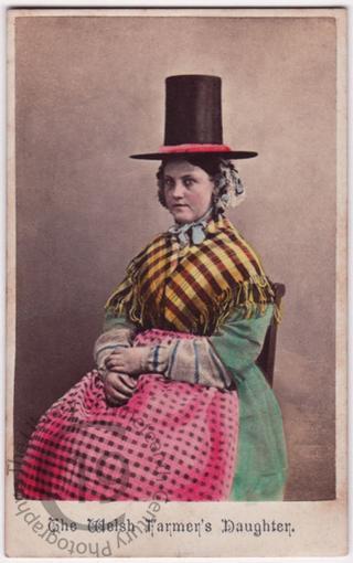 'The Welsh Farmer's Daughter'