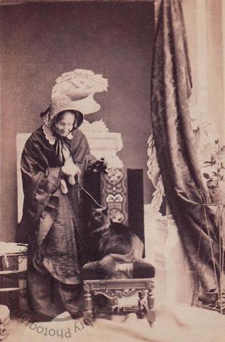 Lord Cadogan's cat