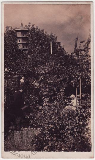 A garden in Southsea