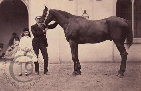 Two children with a horse