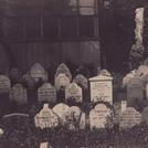 Pet cemetery in Hyde Park, London