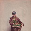 Chickweed seller